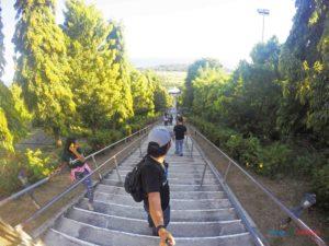 Stairway To Heaven Garin Farm